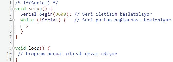 ifSerialve Serial.begin kullanım şekli