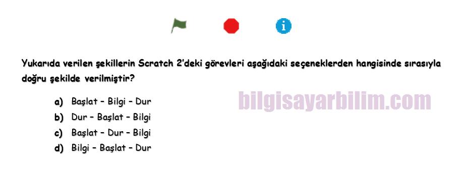 Scratch8