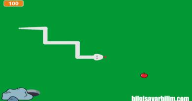 Scratch Uygulaması: Yılan Oyunu